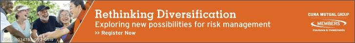 Rethinking Diversification image